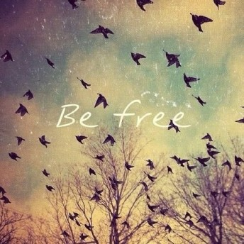 be free CV Freedom Churches